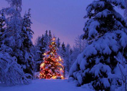 CESV MESSINA, gli appuntamenti delle associazioni per Natale