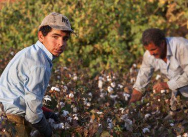 Bando per il contrasto dello sfruttamento dei lavoratori stranieri. Scadenza: 19.09.21
